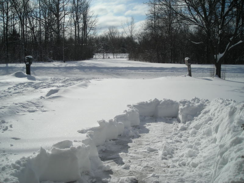 how to get rid of snow without shovel