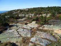 On Cadillac Mountain, Acadia National Park