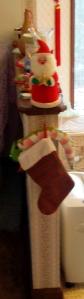 Cat stocking processed