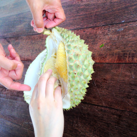 Inside the durian