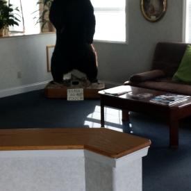 Dawson Inn lobby bear