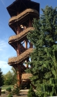 Observation tower (summer), Cox Arboretum